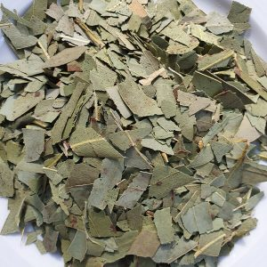 Plantes en vrac - Eucalyptus